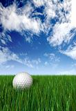 golf ball on grass and blue sky