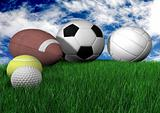 sports balls on grass - horizontal