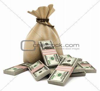 Bag with money dollars