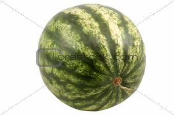 Watermelon isolated over white