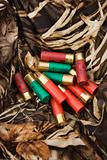 Shotgun shells.