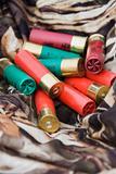 Shotgun shells.