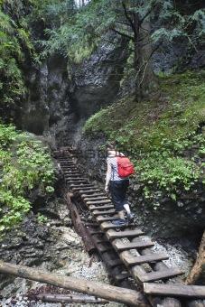 tourist girl walking through the mountain forest
