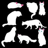 white cat silhouettes