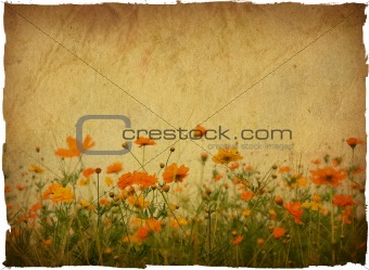 old flower and worn paper texture background