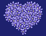 Heart made of Violet flowers