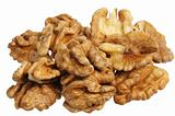 walnut (Juglans regia)