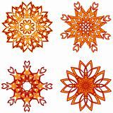 vector illustration of the  flower ornaments