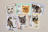 cats - set of vintage post stamps from Poland
