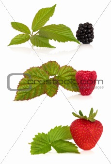 Blackberry, Raspberry and Strawberry