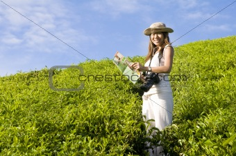 asian female tourist on green tea field