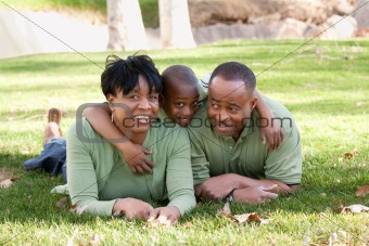 African American Family Enjoying a Day in the Park.