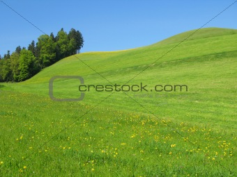 Scenic hills in Emmental region, Switzerland