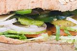 close up of vegetarian sandwich
