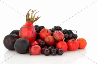Autumn Berry Fruit Selection