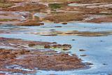 Vravrona Wetland