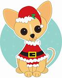 Chihuahua Santa