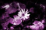 Grunge Floral Decor
