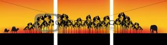 africa panorama
