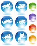 Horse Icon Crystal Set