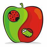 Yin yang apple
