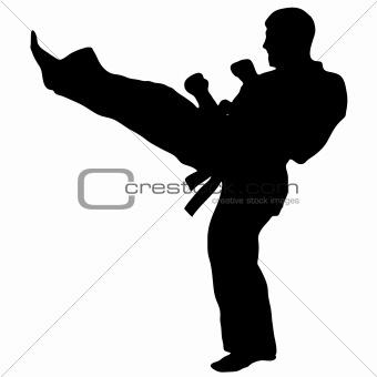 MARTIAL ART-KARATE kick