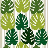 Monstera vector background