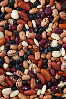 Dry beans