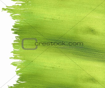 Green coconut paper with brushstroke