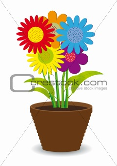 Bright colored flowers in a pot