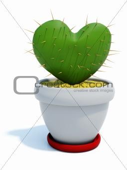 Green cactus as heart