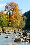 Autumn mountain stony river