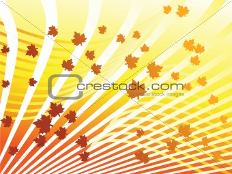 Automn background