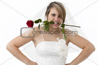 beautiful bride holding a red rose with her teeth