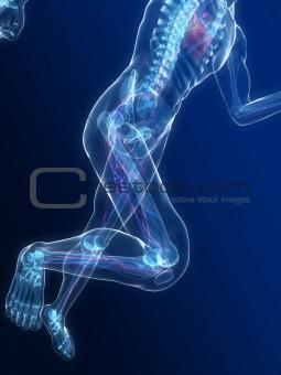 running man - vascular