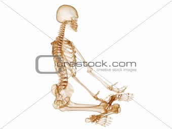sitting skeleton