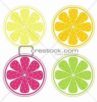 Citrus fruit slices isolated on white background (lemon, lime, orange, grapefruit)