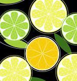 Citrus fruit on black background (vector)