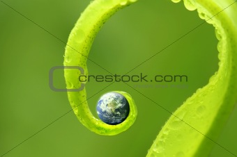 concept photo of earth on green nature ,Earth map by courtesy of