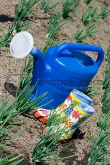 Watering can and rubber boots on the vegetable garden