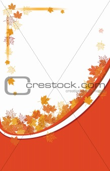 Autumn background, maple leafs