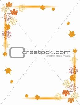 Autumn background, maple leafs