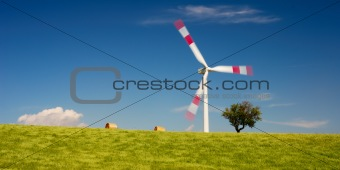 Wheat field and wind turbine