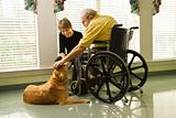 Elderly Man with Woman Petting Dog