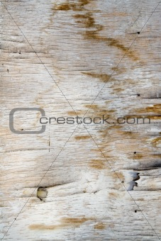 Old Plywood Background. Vertical