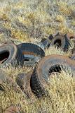 Old abandoned tires in field.