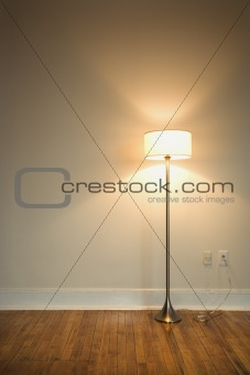 Floor lamp on hardwood floor.