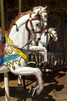 Carousel with white horse portrait