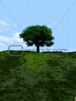 Single Tree 8