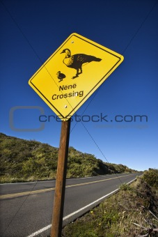 """Nene Crossing"" road sign in Maui, Hawaii."
